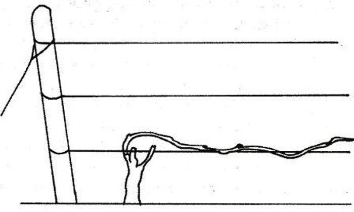 Схема Гюйо