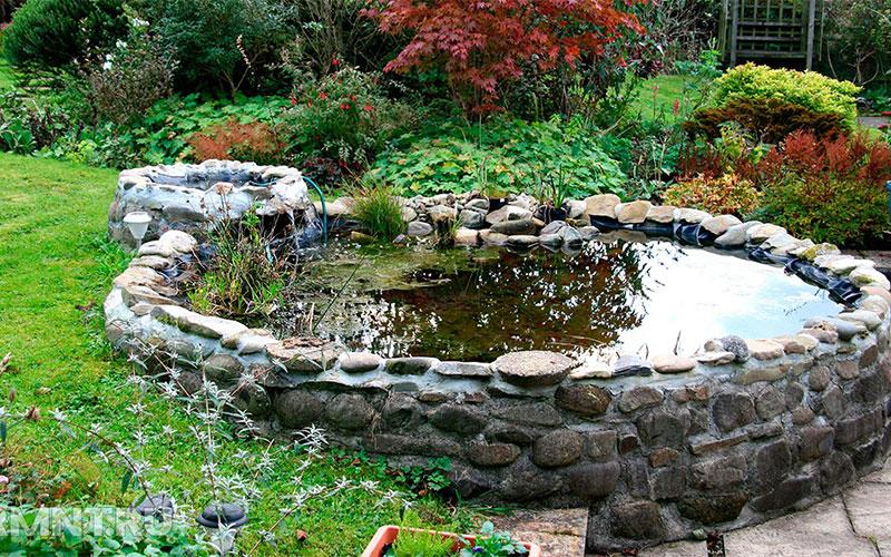 Как выбрать место и размеры для пруда в саду