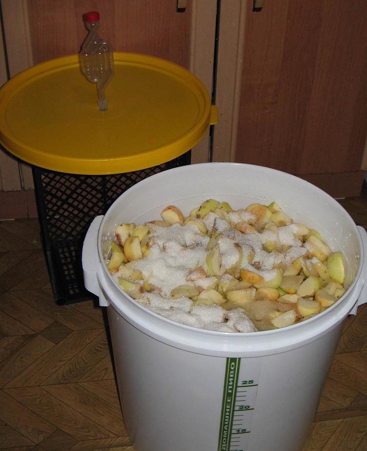 Яблочный уксус – эликсир здоровья в домашних условиях: рецепты приготовления и способы применения