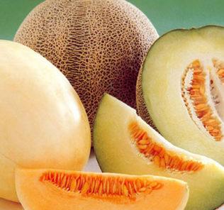Сладкий вкус лета: выясняем, какую пользу и вред несёт дыня для организма