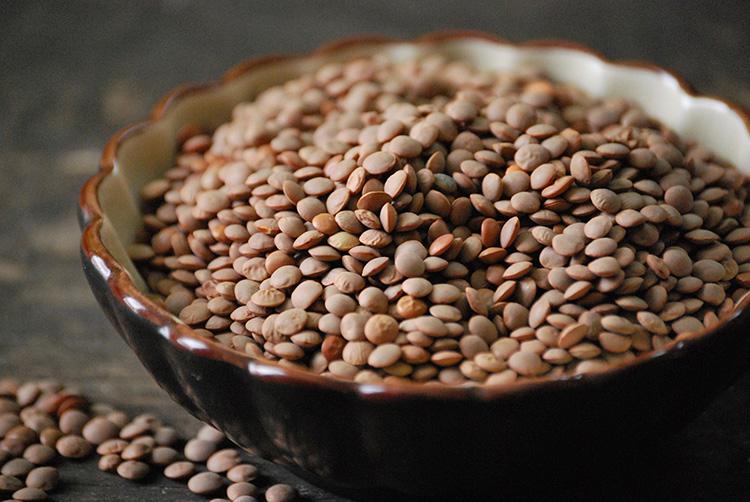 Полезные и вкусные бобовые - чечевица: польза и вред для здоровья человека