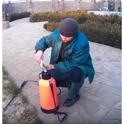 Боремся с вредителями и болезнями в саду: железный купорос и его применение в садоводстве
