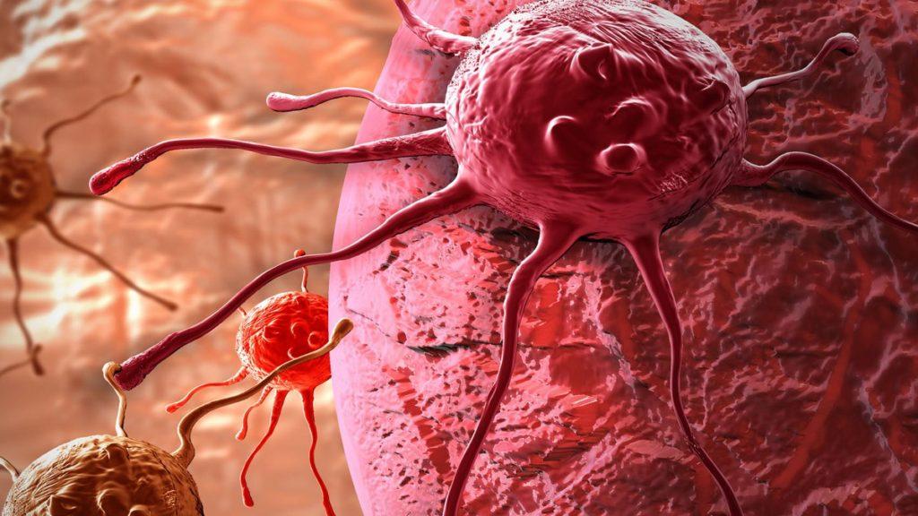 Куркума: лечебные свойства и противопоказания как принимать