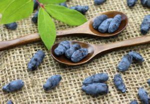 Плоды синие, листья, ложки, стол