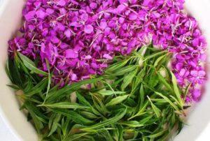 Чашка, зеленые листья, цветы