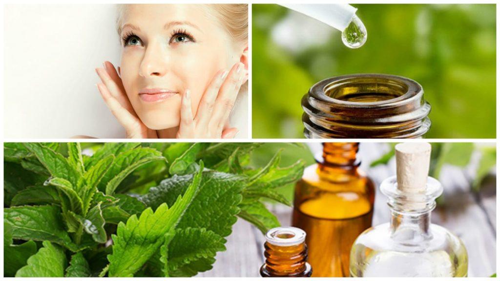 Мята для кожи лица и головы - как принимать, чем полезна и рецепты