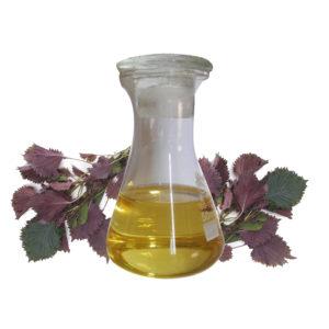 фиолетовые листья растения, сосуд с маслом