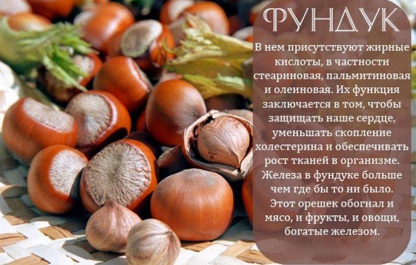 Можно ли есть грецкие орехи при панкреатите