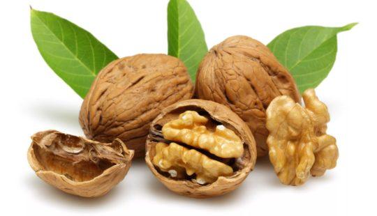 Грецкие орехи польза и вред для организма