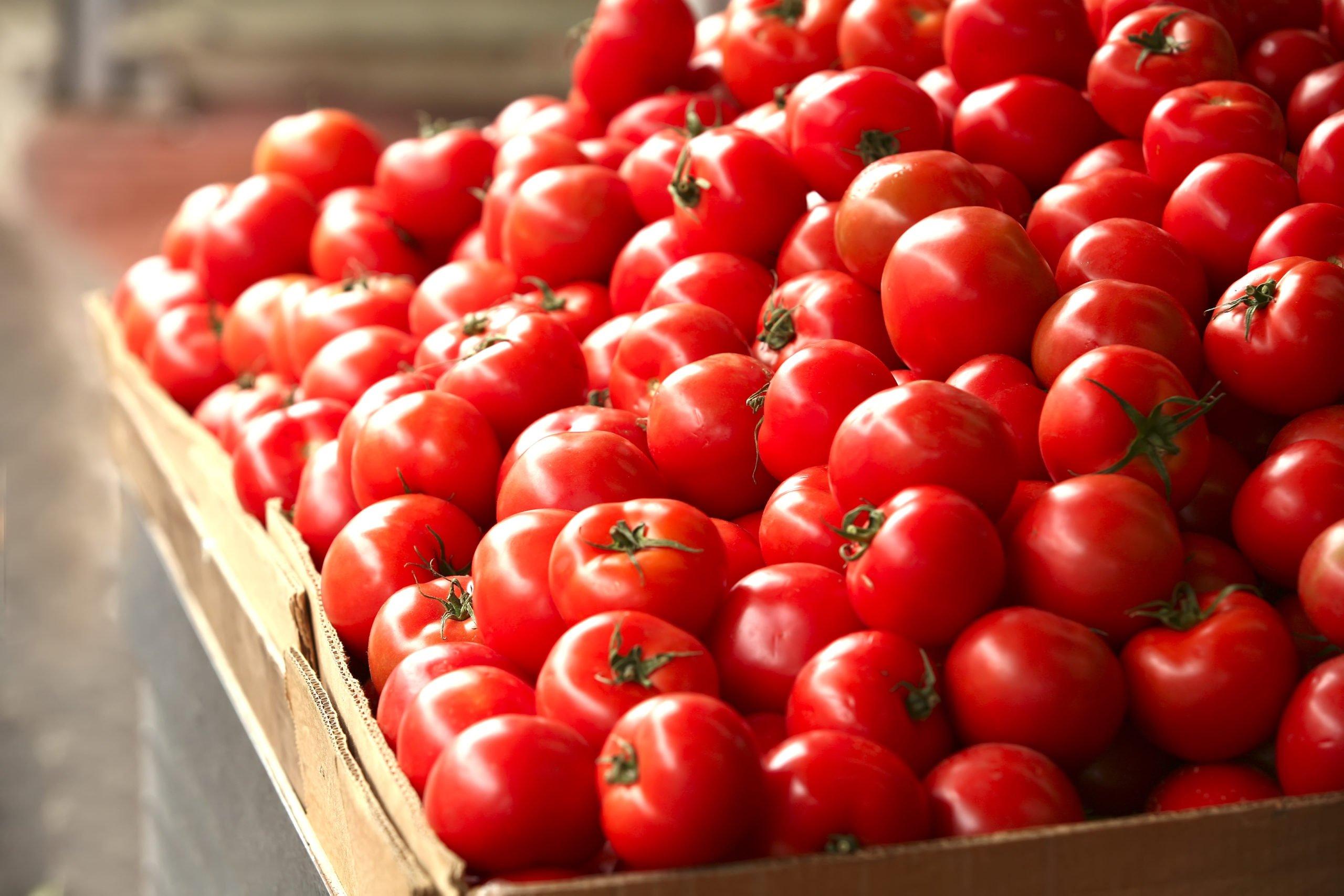 Ярко-красные помидоры