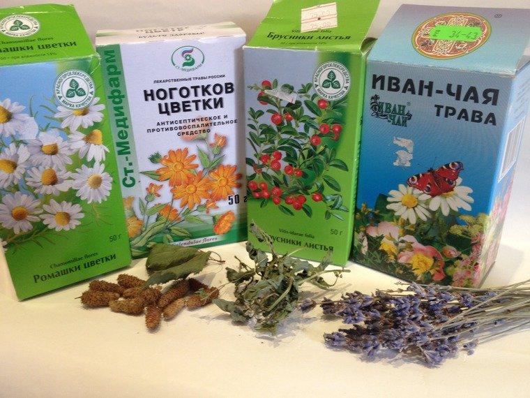 Лекарственные травы в аптеке