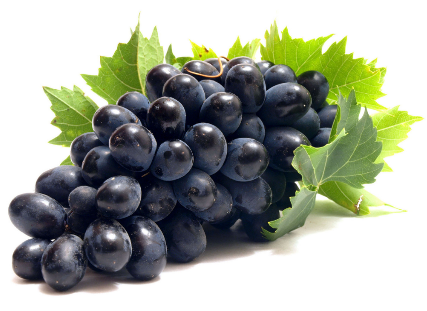 Свойства черного винограда