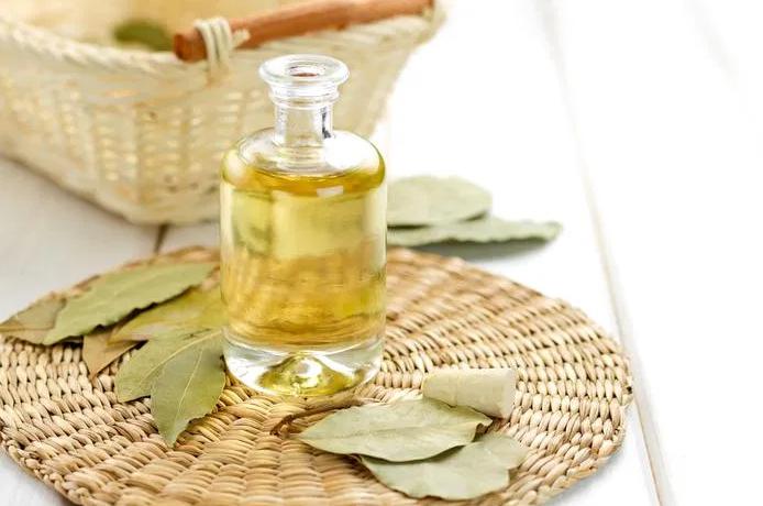 Инфузное масло из лаврового листа