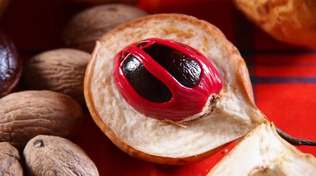 Мускатный орех плод