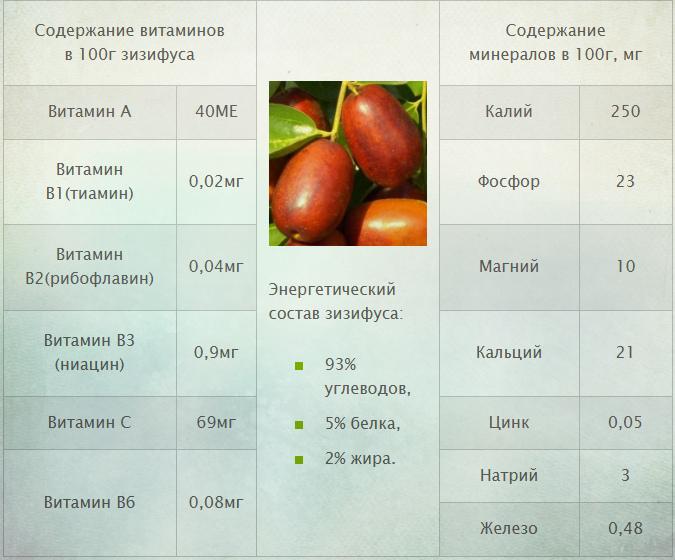 Витамины и минералы Зизифуса