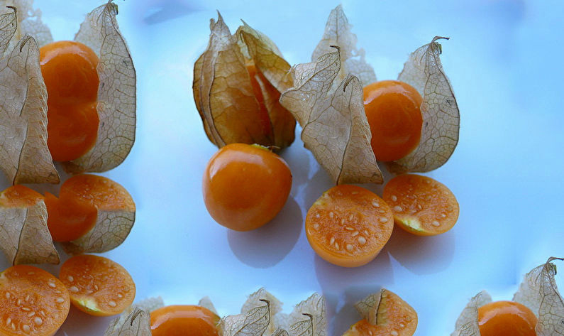 Физалис плоды