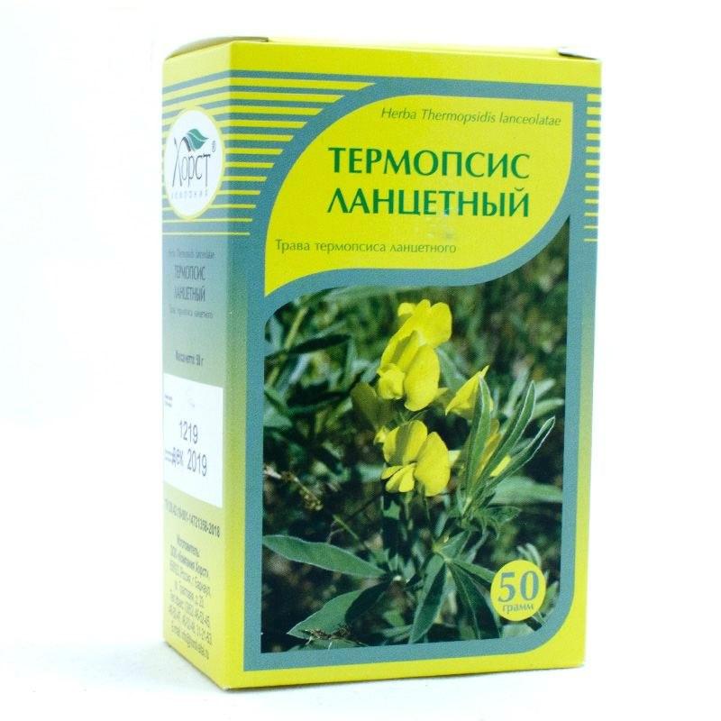 Трава термопсиса