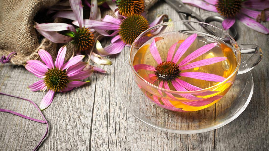 чай пурпурной эхинацеи