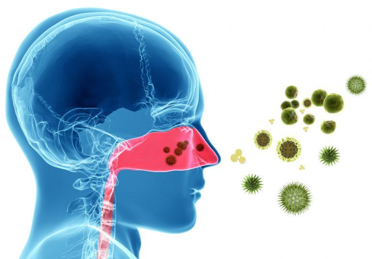 Вирус простуды