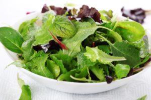 разные виды салатной зелени