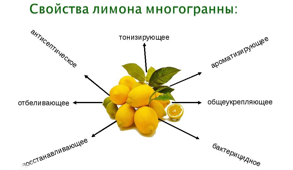 Полезное действие лимона