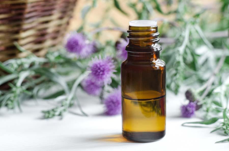 Как принимать масло расторопши для лечения