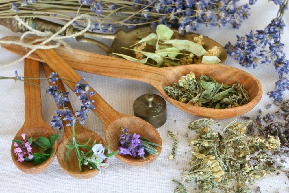 Травы для мочеполовой системы