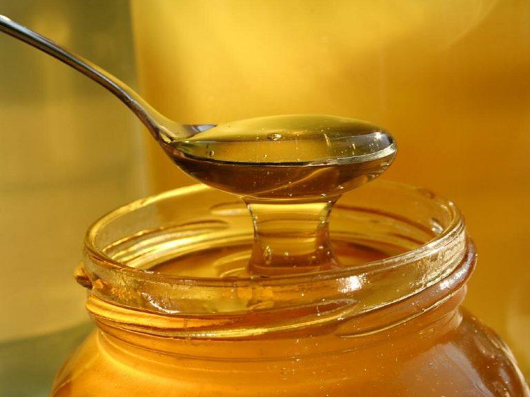 Мед, полученный с гледичии