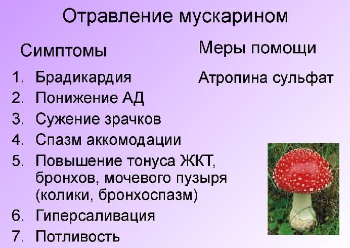 Симптомы отравления мускарином