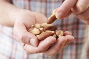 ладонь, орехи