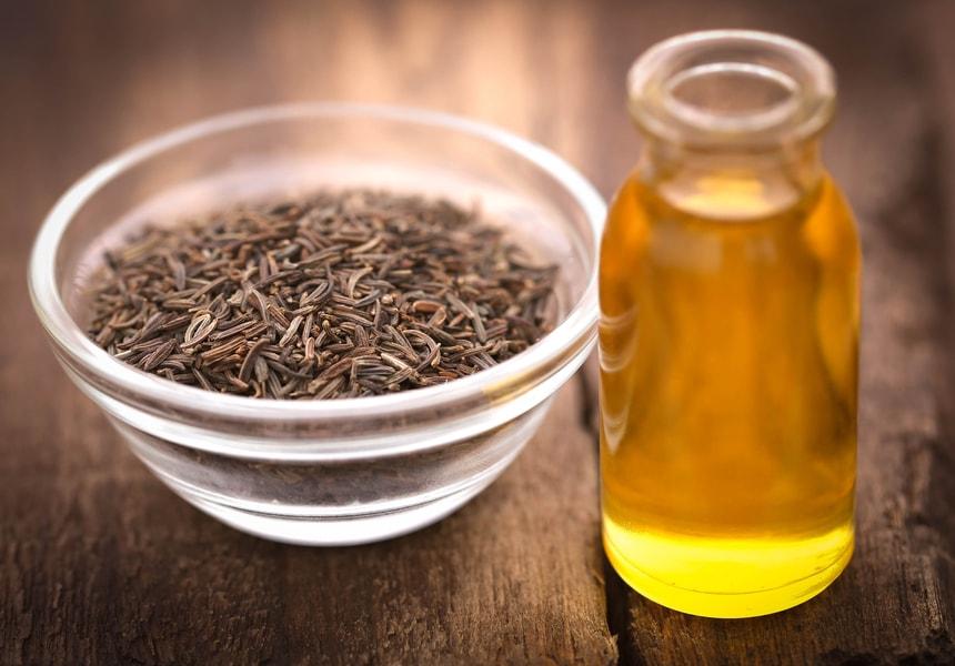 Тмин для эфирного масла