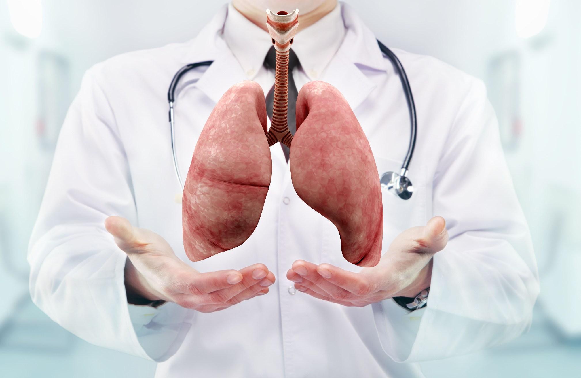Цикорий для лечения заболеваний легких