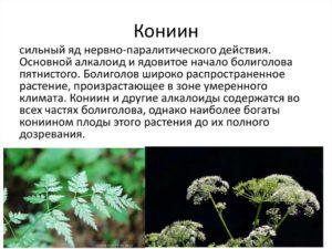 таблица с растениями и надписью