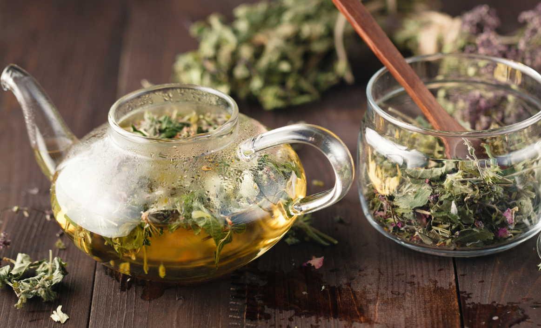 Травяной сбор для лечения инфекций мочеполовых органов