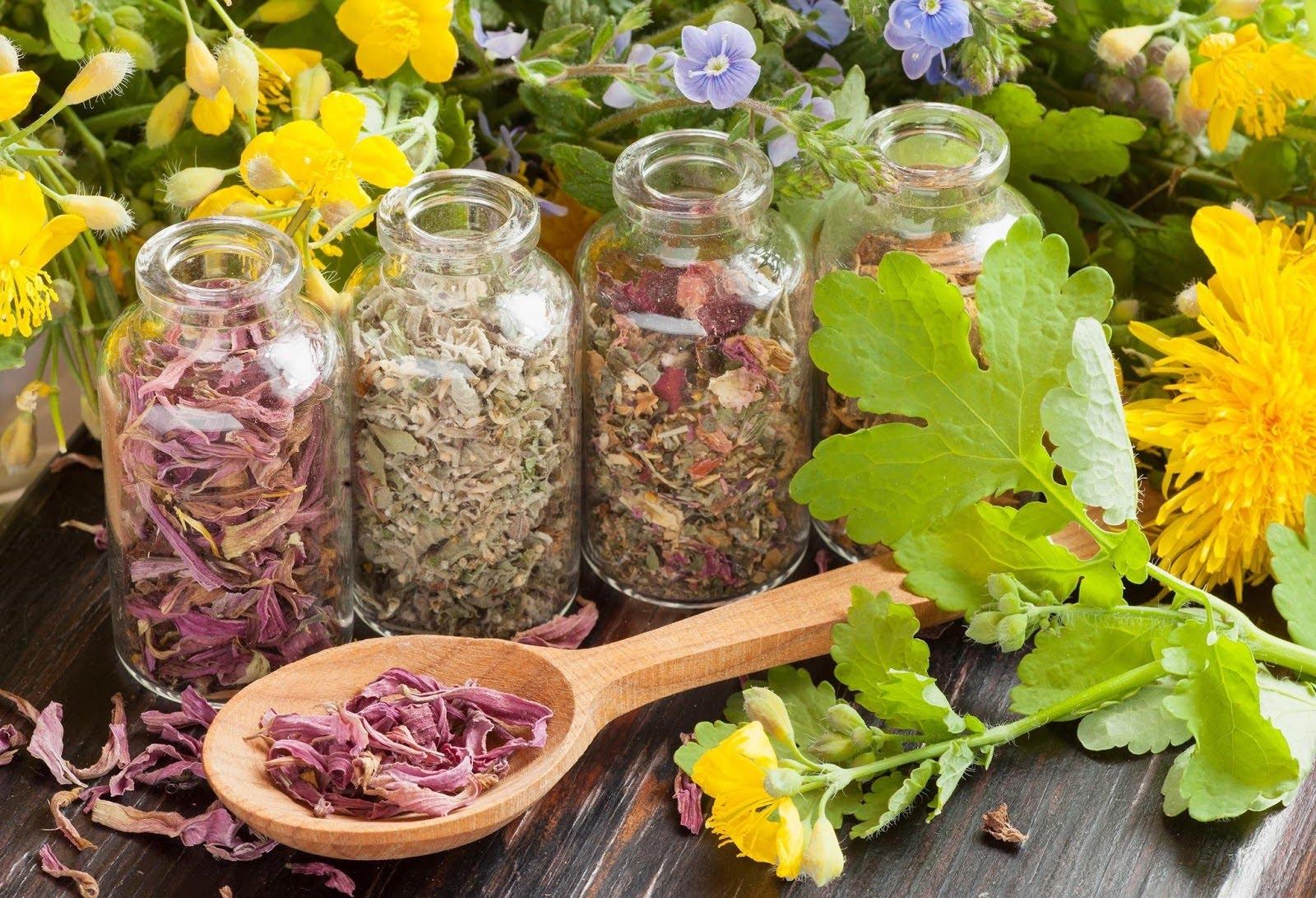 Трава для похудения и очищения