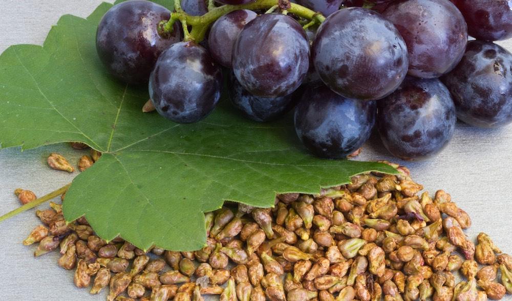 Белый виноград польза и вред для организма