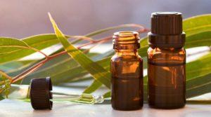 зеленые длинные листья, флаконы с маслом