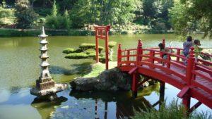мост, озеро, парк