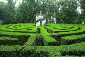 зелень, парк, лабиринт, здание