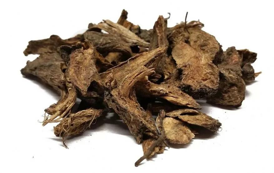 Чай из корня дягиля