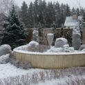 Как правильно подготовить растения к зиме
