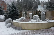 зима, сад, растения