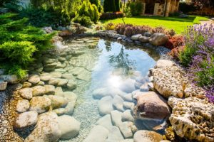 камни, вода, цветы, сад