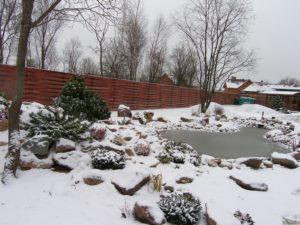 пруд во дворе зимой