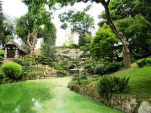 вода, парк, деревья