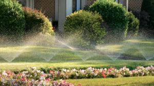 газон, вода, дом, растения