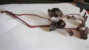 черенок растения с красными листьями