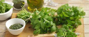 зелень, высушенная трава, стол, посуда