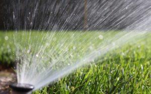 газон, вода