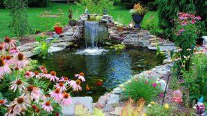 клумбы, растения, пруд